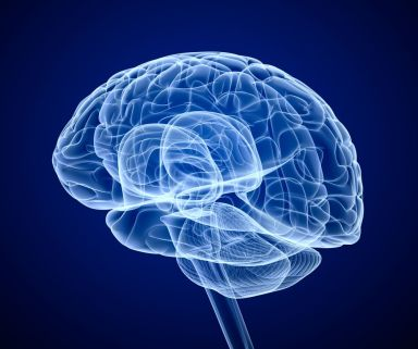 the-possibilities-and-the-future-of-brain-hacking
